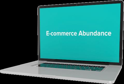 ecom-abundance-trans